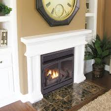 amazon com procom dual fuel fireplace insert zero clearance home