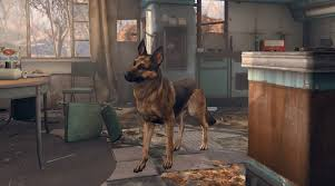 belgian shepherd killed fallout 4 player killed by careless dogmeat