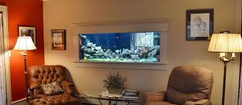 decorative fish tanks for living rooms living room design ideas
