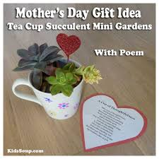 gift idea for s day gift idea for kids tea cup succulent mini gardens with