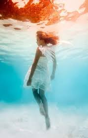 by harry fayt underwater harry fayt pinterest harry fayt photographer just in time for the new year