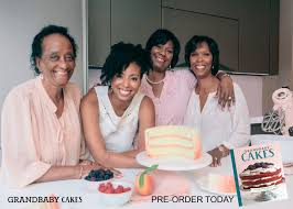 introducing the grandbaby cakes cookbook and video pre orders