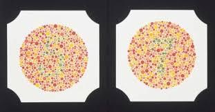 Color Blind Plate Test Testing For Colorblindness Testing For Colorblindness
