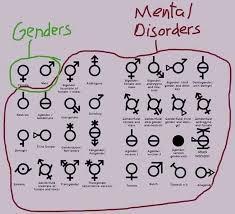 Common Sense Meme - finally a common sense intellectually factual guide to gender meme