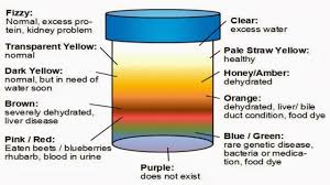 Color Meanings Chart by Urine Color Chart The Urine Color Determines Your Health Status
