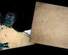 Get Nail Polish Out Of Rug Sofa Dog Bed U2013 Slovenia Dmc Com