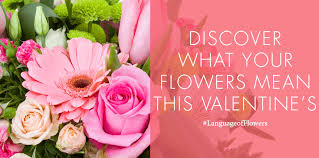 Meaning Of Pink Roses Flowers - meaning of flowers archives bagoy u0027s florist and home