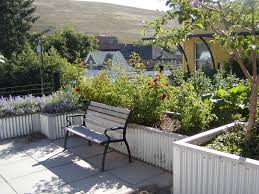 roof garden plants lawn garden small rooftop ideas recommended plants plus images