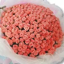 Roses Bouquet 100 Pink Roses Bouquet