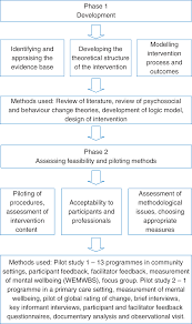 promoting mental wellbeing developing a theoretically and