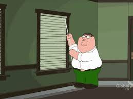 Peter Griffin Meme - animated meme peter griffin vs blinds