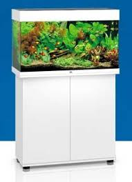Fluval 125 Cabinet Juwel Rio 125 White Aquarium And Cabinet Juwel