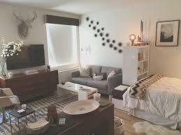 Studio Apartment Ideas Awesome Mini Studio Apartment Ideas Creative Maxx Ideas