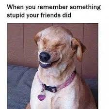 Stupid Friends Meme - dopl3r com memes when you remember somthing stupid your