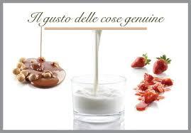 slogan cuisine slogan picture of il gelato saronno tripadvisor