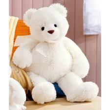 height white teddy