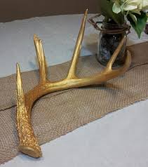 Christmas Decorations With Deer Antlers by 32 Best Deer Antlers Diy Images On Pinterest Deer Antlers