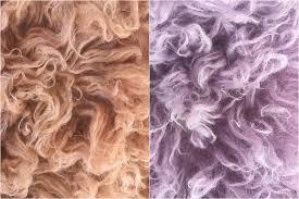 How To Make A Faux Fur Rug Diy Hand Dying Flokati Rugs With Ana Brandt U2013 Taopan
