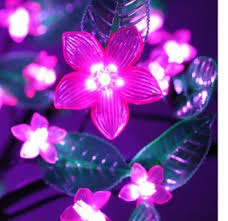 pink outdoor string lights 14 awesome pink outdoor lights design