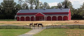 backyard horse barns equestrian buildings and beautiful colorado horse barns