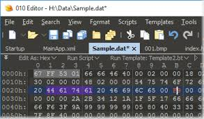 010 editor professional text hex editor with binary templates