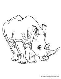 hippos coloring pages funnycoloring kids coloring pages