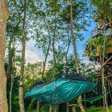19 of the most spectacular tree tents that money can buy hammock