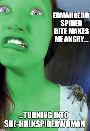 Ermahgerd Meme Creator - image tagged in spiderman hulk imgflip