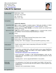 resume format samples download sweet looking new resume format 9 download write the best cv spectacular idea new resume format 10 welcome to kikis blog sample resume format examples
