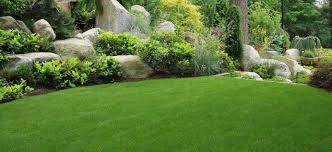 spring landscaping spring cleanup services bergen county nj landscaper