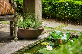 ay mag ay is about you p allen smith diy water garden in a