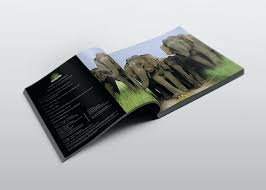 Coffee Table Book Covers Coffee Table Book Designs Raunsalon