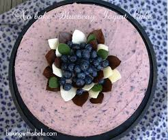 no bake blueberry yogurt cake diy chocolate leaves decoration