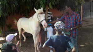 thanksgiving field trip bilingual school of bamako