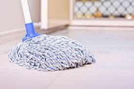Floor Mop by Bona Hardwood Floor Mop Express Reviews Titandish Decoration