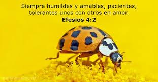 imagenes catolicas de humildad 38 versículos de la biblia sobre la humildad dailyverses net