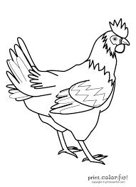 rooster coloring page rooster coloring page print color fun