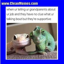 Clean Memes - cat memes clean memes the best the most online page 2