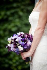 Wedding Flowers January Best 25 Phlox Bridal Bouquet Ideas On Pinterest Phlox Wedding