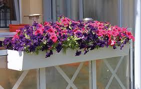 balkon blumenkasten blumenkästen fbs förster balkon systeme