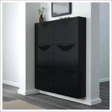White Shoe Storage Cabinet Furniture Wonderful Shoe Storage Furniture Closet Shoe Organizer