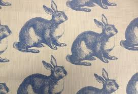 rabbit material bunny occasions visi