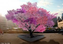 magical looking tree that bears 40 different fruit daily mail