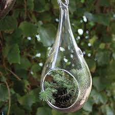 teardrop hanging terrarium u2013 46 u0026 spruce home and garden
