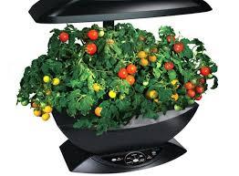 indoor garden kit 5 best indoor herb vegetable growers for 2017