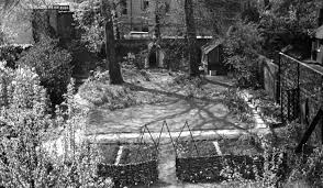 black and white negative a view of the garden eldon grove