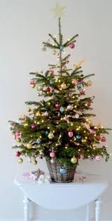 small christmas small christmas tree design wallpaper photography hd