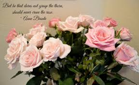quote garden family grasp the rose quote insanity is not an option
