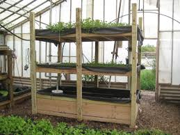 an introduction to hydroponics at home