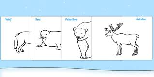polar animals colouring sheets arctic winter xmas